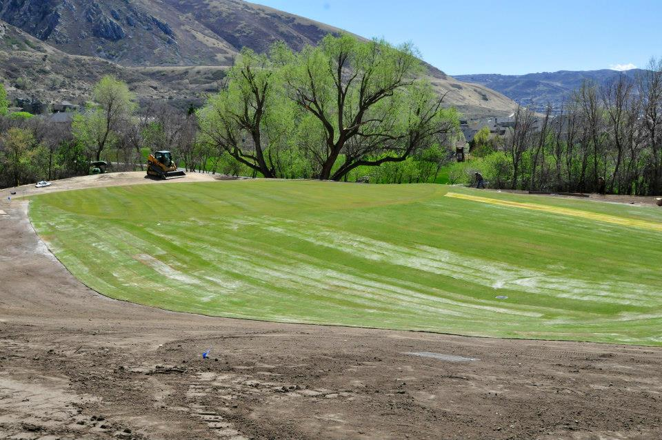 Turf Grass installation by The Turf Company