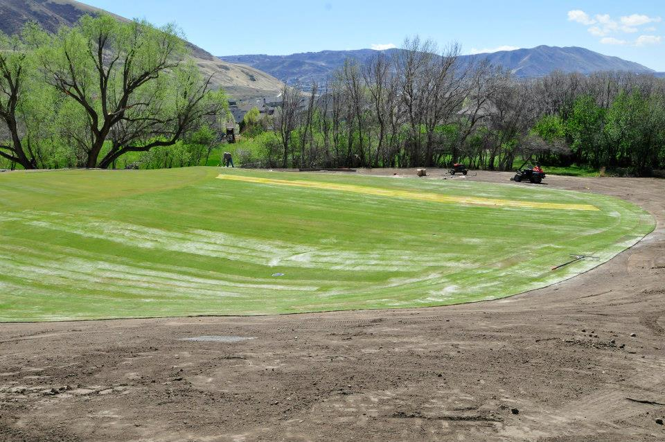Sod installation by The Turf Company