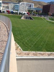 Sod Grass installation by The Turf Company at The University of Utah, Salt Lake City, Utah