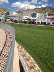 Turf Grass installation by The Turf Company at The University of Utah, Salt Lake City, Utah